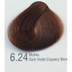 Color Inn Professional Saç Boyası 60 ml  Mokka (6.24)